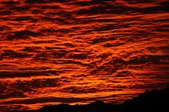 Sunset 11 17 2017 035 (Az Skies Photography) Tags: sun sky skyline skyscape arizona az arizonasky arizonaskyline arizonaskyscape november 17 2017 november172017 111717 11172017 cloud clouds red orange yellow gold golden salmon black canon eos 80d canoneos80d eos80d canon80d set sunset dusk twilight nightfall arizonasunrise casa grande casagrande casagrandeaz