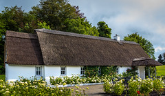 Ireland - Cong - Ashford Golf Course (Marcial Bernabeu) Tags: marcial bernabeu bernabéu ireland irlanda irish irlandes cong golf course house cottage ashford campo
