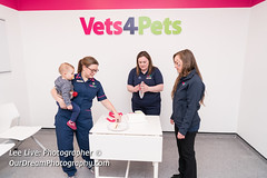 Vets4Pets-17120910 (Lee Live: Photographer) Tags: amydyce animalcareassistant bonnyrigg companioncare councilloradammontgomery cuttingofthecake cuttingtheribbon dog groupshot guineapig leelive lordprovost midlothian operatingtheatre ourdreamphotography petcare pets rabbit staff storeopening surgeon vetnurse veterinarysurgery vets4pets vets4petsbonnyrigg wwwourdreamphotographycom