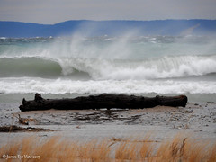 The Great Lakes (JamesEyeViewPhotography) Tags: lake michigan water waves wind beach grass greatlakes winter sleepingbeardunesnationallakeshore northernmichigan landscape nature lakemichigan december gale jameseyeviewphotography