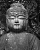Inner Light B&W (Ryan Jefferds) Tags: statue buddah japan kyoto 2017 nikon d5000 bw patina forest temple monochrome