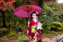 Mameryu - Maiko in Kyoto 10 (JUNEAU BISCUITS) Tags: maiko geisha japan kyoto gion portrait portraiture model beauty glamour nikond810 nikon kimono umbrella garden temple