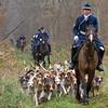 Piqueux, Compiègne (Phil du Valois) Tags: piqueux venerie chasse chien meute