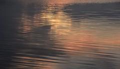 Abend an der Badestelle Meggerdorf an der Alten Sorge; Meggerdorf (4) (Chironius) Tags: meggerdorf stapelholm schleswigholstein deutschland germany allemagne alemania germania германия niemcy sorge fluss river rivière rio поток fiume stream spiegelung refleksion reflection réflexion riflessione отражение reflexión yansıma wasserspiegel explored