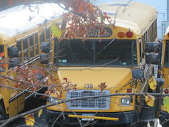First Student #139 (ThoseGuys119) Tags: firststudentinc wallkillny schoolbus thomasbuilt icce freightliner fs65 ce