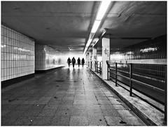 urban perspectives (kurtwolf303) Tags: ubahn hamburg deutschland 2017 unterführung people personen monochrome bw sw underpass lichtschatten lightshadows unlimitedphotos germany europe lightroomclassiccc olympusem1 omd microfourthirds micro43 systemcamera mirrorlesscamera spiegellos mft kurtwolf303 urbanlifeinmetropolis urban dark dunkel strasenfotografie streetphotography silhouettes 250v10f topf25 topf50 500v20f topf75 topf100 1000v40f topf150
