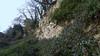 20171117 Wlk frm Pleasley_0049 Limestone Cliffs~Little Matlock (paul_slp5252) Tags: derbyshire nottinghamshire limestonecliffs littlematlock