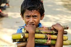 A Rohingya Boy With Sugarcane (Galib Emon) Tags: portrait arohingyaboywithsugarcane rohingya littleboy sugarcane rohingyaboy curious colors streetphotography photojournalism travel rohingyarefugee refugee crimesagainsthumanity unchiprang ukhiya teknaf coxsbazar chittagong bangladesh genocide violations victim aidsearching rohingyarefugeecrisis rohingyarefugeeinbangladesh un myanmar burma rakhinestate humanrights humanity militarycrackdown rohingyamuslims arakanrohingya salvationarmy help rohingyarelief rohingyaissue rohingyavictim savethechildren children rohingyapeople homeless refugeecamp explore explorebangladesh exploreworld 1millionrohingyarefugeesinbangladesh global world hopeless unhcr unicef september 2017 stoptheviolenceagainsttherohingyainmyanmar galibemon unchiprangmakeshiftcamp influx dof crossedtheborderintobangladesh eyes face naturallight unchiprangrohingyarefugeescamps