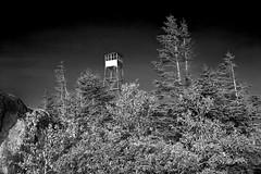 St Regis Firetower (phonnick) Tags: stregis firetower mountain summit adirondacks hike hiking trail monochrome blackandwhite bw canon6d canon 6d