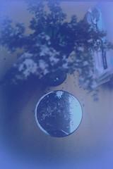 (hand-colored postcard sort of day) (William Keckler) Tags: atavism postcard simulacrum color lilacs spring mirror film analog 35mm lomo lomography