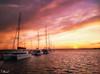 Luz de Poniente / Heading to west (tmuriel67) Tags: light colours clouds sky seascape sunset ships harbour sea outdoors ocaso atardecer