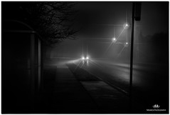 DECEMBER 2017  NGM_6655_3311-1-222 (Nick and Karen Munroe) Tags: fog foggy fogpatches heavyfog mist misty mistpatches beauty brampton beautiful brilliant blackandwhite bw blackwhite bandw munroedesignsphotography munroedesigns munroephotography munroe monochrome daybreak daylight darksky afterdark dawn nightsky nighttime nightphotography nightshots nikon nickmunroe nickandkarenmunroe nature nikon2470f28 nickandkaren nick d750 nikond750 2470 2470f28 karenick23 karenick karenandnickmunroe karenmunroe karenandnick karen landscape ontario outdoors ontariocanada canada