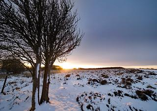 Owler moors sunrise.