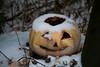 When Fate Summons (Jules (Instagram = @photo_vamp)) Tags: rotting decay pumpkin jackolantern snow december nature winter stuffinmybackyard