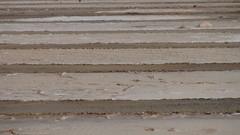 DSC00363 (Les photos du chaudron) Tags: favoris sal capvert santamaria