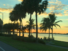 Another Beautiful Sarasota Sunset IMG_6687 (soniaadammurray - Off) Tags: iphone sunset driving road water grass bushes trees path bench sea sky clouds lights quartasunset land beauty sarasota florida usa streetscene reflections shadows quote kristenbutler