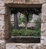 The secret garden (grannie annie taggs) Tags: palermo sicily framed garden hermitage wall