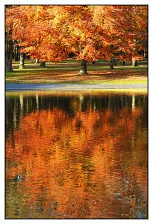 Reflet d'automne -  Autumn reflection