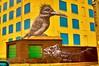 Dude..,,..!!! (ixiap) Tags: bird fish building rain chicago street dude nikon d100 brick graffiti photo