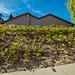 10989 Red Cedar Dr San Diego-MLS_Size-045-32-045-1280x960-72dpi