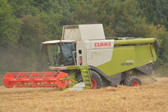 Claas Lexion 650 Combine Harvester cutting Winter Wheat (Shane Casey CK25) Tags: claas lexion 650 combine harvester cutting winter wheat mallow grain harvest grain2017 grain17 harvest2017 harvest17 corn2017 corn crop tillage crops cereal cereals golden straw dust chaff county cork ireland irish farm farmer farming agri agriculture contractor field ground soil earth work working horse power horsepower hp pull pulling cut knife blade blades machine machinery collect collecting mähdrescher cosechadora moissonneusebatteuse kombajny zbożowe kombajn maaidorser mietitrebbia nikon d7100