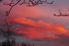 Perfect end to the day (jmiller35) Tags: ngc england liverpool nighttime trees night atmospheric atmosphere outdoors canon silhouette firesky purple red weather sky clouds