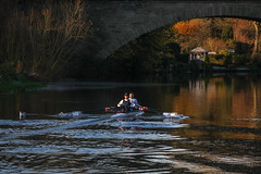 Rowing on the River Avon (Explore) (babs pix) Tags: rowing riveravon river warwick warwickshire autumn autumncolours doublescull