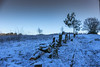 Daresbury Laboratory Snow (joanjbberry) Tags: daresbury daresburylaboratory snow winter winterscene landscape