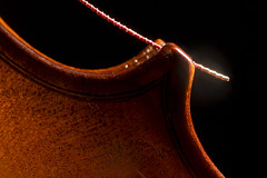 Cosy corner (alideniese) Tags: macromondays memberschoicemusicalinstruments musicalinstrument violin violinbody wood warmth string violinstring detail macro closeup light shadow blackbackground alideniese 7dwf grain musical instrument curves corner