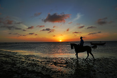 Sunset ride (alestaleiro) Tags: sunset ride horse cavallo caballo cavalo chevall sol sole sun dawn playa jeri jericoacoara ceará brasil cielo sky céu celo nubes clouds beach sipiaggia plage praia jinete reflection reflejo atardecer pôrdosol alestaleiro