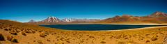 PA200742-Pano (chrhuber) Tags: 2017 8tag atacama chile lagunamiscanti panorama urlaub wüste sanpedrodeatacama regióndeantofagasta cl