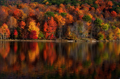 Even more moments to reflect.. (Captions by Nica... (Fieger Photography)) Tags: reflections reflection water trees tree mountain landscape lake nature outdoor autumn forest fall woods woodlands quebec canada serene