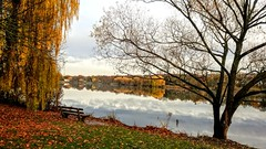 Sit, look, enjoy... Part IV (DrQ_Emilian) Tags: fall autumn nature view landscape lake trees leaves colors light reflection evening mood outdoors bench calm relax relaxation maxeythsee stuttgart badenwürttemberg germany europe travel season water smartphone photography