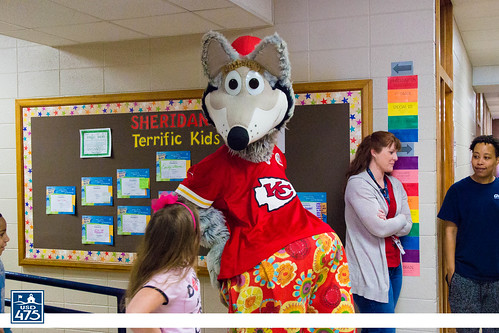 "2017 KC Wolf Visits Sheridan • <a style=""font-size:0.8em;"" href=""http://www.flickr.com/photos/150790682@N02/37849807154/"" target=""_blank"">View on Flickr</a>"