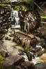 Nakatsugawa water mill (Jorge Císcar) Tags: cascadawaterfall gifu honmaripark nakatsugawa naturalezanature nikond610 parquepark rocarock tamron2470mmf28vc vacacionesholidays verdegreen viajetravel viã±eteadovigneting fotografíadeviaje travelphotography japón japan marron brown viñeteadovigneting watermill molinodeagua luminar2018