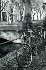 bike@Kö, Düsseldorf 25 (Amselchen) Tags: bicycle water trees bridge mono monochrome bnw blackandwhite bokeh blur dof depthoffield sony a7 alpha7 zeiss carlzeiss sonnart1855 sonnar5518za fe55mmf18za sonyilce7