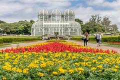 Jardim Botânico III (Pedros0ares) Tags: curitiba parana jardim parque flores museu praça mercado