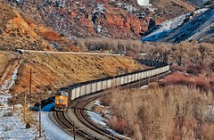 Out of the Red Narrows (rolfstumpf) Tags: usa utah unionpacific up6060 coaltrain trains mountains wasatchmountains railway railroad olympus