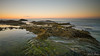 Laguna Beach, CA (Jose Matutina) Tags: california lagunabeach orangecounty treasureislandpark