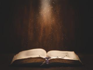 Rain of stars ✨✨✨