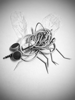 - unplug -  #earphone #unplug #abstract #mosquito #stilllifephotography #fineartphotography #blackandwhite #blackandwhitephoto #blackandwhitephotography #bnw #bnwphotography #bw #bwphotography #monochrome #monochromephotography #other #freestyle #iphone