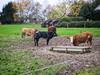 Matsch. (jens.steinbeisser) Tags: deutschland olympusepl3 niedersachsen tierfotografie rawtherapee outdoor fujian35mm17 cmount
