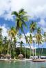 Sainte-Lucie, Caraïbes - 0869 (rivai56) Tags: castries saintelucie lc caraïbes stlucia saintlucia carabbean antilles sus sonyphotographing île palmier sur une des plages de saintlucie