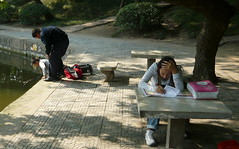 Chinese Student Racking Her Brains (Wolfgang Bazer) Tags: hefei anhui university coed campus student china