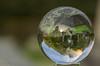 Sphere Practice.... (joanjbberry) Tags: daresbury church clean up daresburychurch cheshire warrington veterans cleanup glassball sphere
