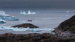 Whale-watching (Role Bigler) Tags: boat canoneos5dsr diskobucht ef4070200isusml natur nature eisberg greenland grönland iceberg nordatlantik northatlantic whale whalewatching