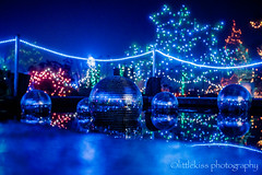 Festival of Lights 2017 (4) (littlekiss☆) Tags: festivaloflights illumination christmas christmaslight nightscape winter holidayseason night vancouver vandusenbotanicalgarden littlekissphotography