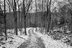 Through The Woods to Grandma's House (K2parn Photography) Tags: lincoln newhampshire unitedstates us