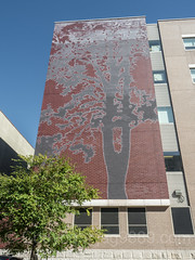 Washington Heigths Academy Wall Mural, Inwood, New York City (jag9889) Tags: jag9889 usa building manhattan inwood newyork outdoor 20171019 monumental uppermanhattan 2017 tree newyorkcity w204street sky wall shermanavenue mural 204street architecture highdynamicrange house inwoodite ny nyc unitedstates unitedstatesofamerica w204st wahi west204thstreet us