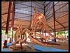 suchumimus tenerensis dinosaurus (harrypwt) Tags: harrypwt niger niamey agadez historical dinosaurus canons95 s95 framed sceleton archeology museum market paleo